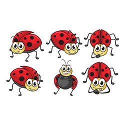 Smiling ladybugs vector