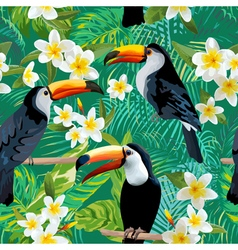 Tropical Flowers and Birds Background Toucan Bird vector image