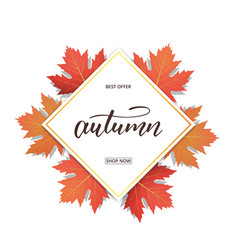 autumn banner with maple leaves frame and trendy vector image