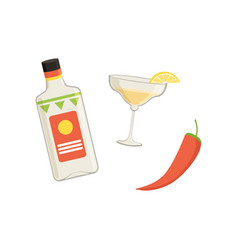 bottle tequila glass with lime slice and chili vector image