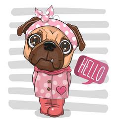 Cartoon pug dog in a coat and boots vector