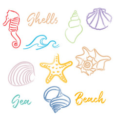 hand drawn doodle watercolor seashells and sea vector image