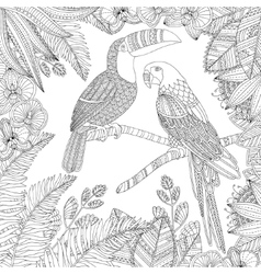 Hand drawn toucan bird and ara parrot vector