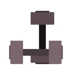 Pair dumbbell for training in gym vector