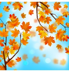 Red and yellow leaves against blue skyEPS 8 vector