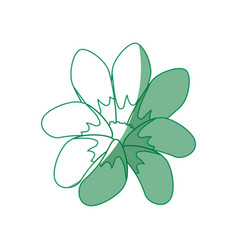 Beautiful flower decoration vector
