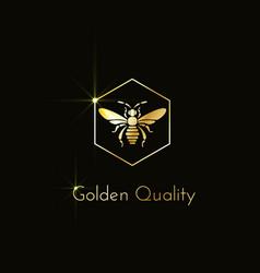 bee logo vector image