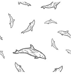 dolphin isolated animal seamless sketch scratch vector image