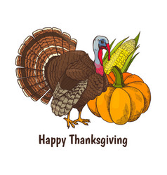 happy thanksgiving poster turkey animal vector image