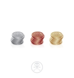 Pirate Coins One Column vector image