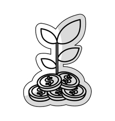 plant with coins isolated icon vector image