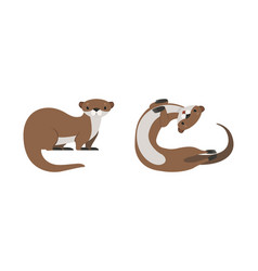 set cute weasel adorable funny otter animal vector image