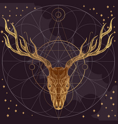 Sketch of deer skull on dark purple background vector