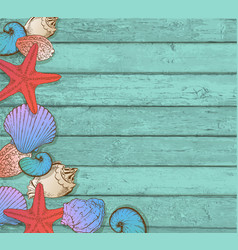 sea shells on a wooden background vector image vector image