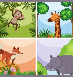 background template with wild animals in forest vector image