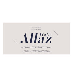 Elegant awesome alphabet letters italic font and vector