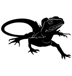 Graphic silhouette of a baby iguana vector