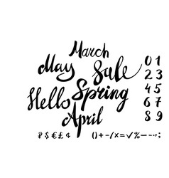 Hello spring lettering typography set Calligraphy vector image