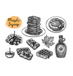 Ink sketches desserts with maple syrup vector