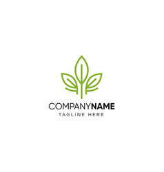leaf logo tea logo design vector image