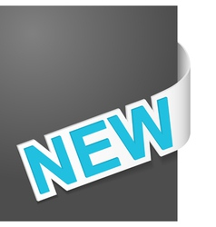 right side sign new vector image vector image