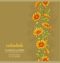 calendula background vector image
