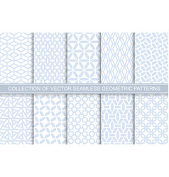collection seamless ornamental delicate vector image