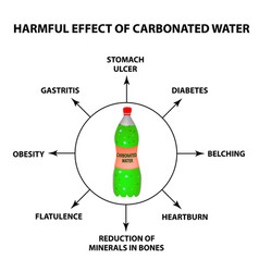 harmful effect of carbonated water vector image