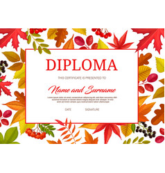 kids certificate with autumn leaves and berries vector image