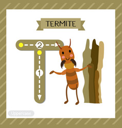 Letter t uppercase tracing termite vector