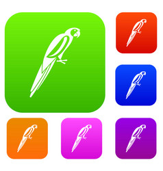 Parrot set collection vector