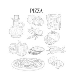 Pizza Ingredients Isolated Hand Drawn Realistic vector