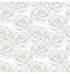 Seamless pattern with hand draw sketch rose vector