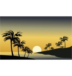 Silhouette of river and palm tree vector image