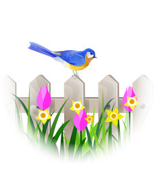 Spring blue bird vector