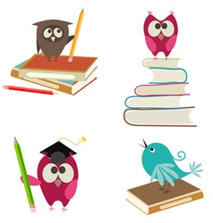 cute bird learning vector image vector image