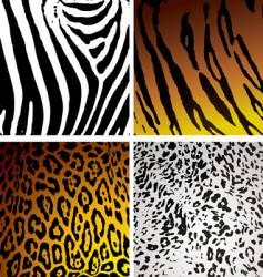 Animal skin variation vector
