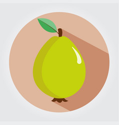 guava fruit on a white space with shadows vector image