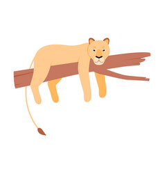 Lioness on a tree on a white vector