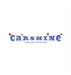 Logo car shine gradient color vector image