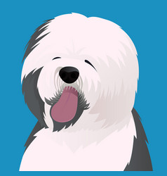 Old english sheepdog close up vector