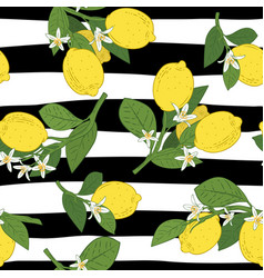 seamless branches with lemons green leaves and vector image