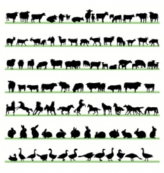 Farm animals2 vector
