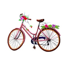 Bike and flowers vector image vector image