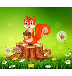 Cartoon squirrel holding pine cone on tree stump vector image