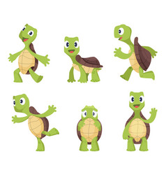 cartoon turtle in various action poses vector image