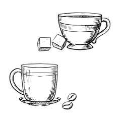 cup coffee with beans and tea with sugar vector image