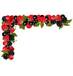 Frame made of fresh juicy berries vector image