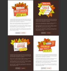 Limited time autumn posters discount promo coupons vector