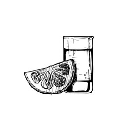 shot glass vector image